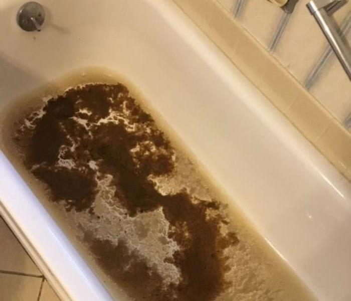Bathtub full of sewage from a clogged drain pipe