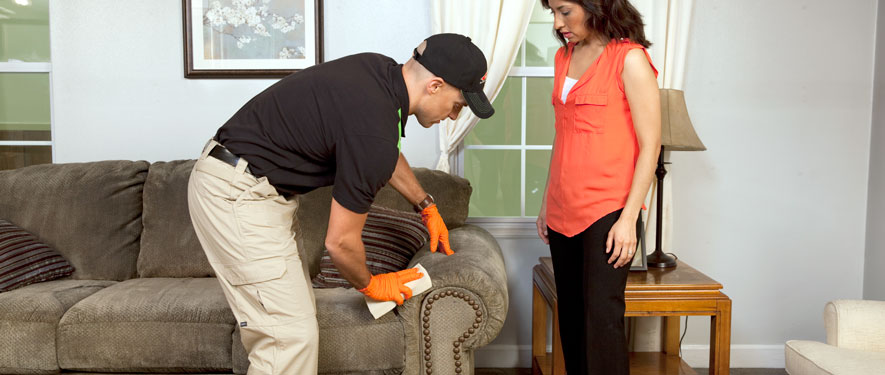 Vacaville, CA carpet upholstery cleaning