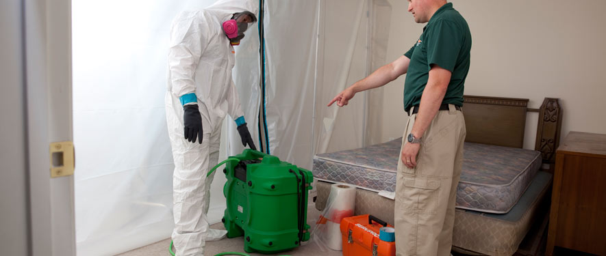 Vacaville, CA mold removal process